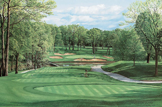 13th Hole, Medinah, No. 3 Course, 1990